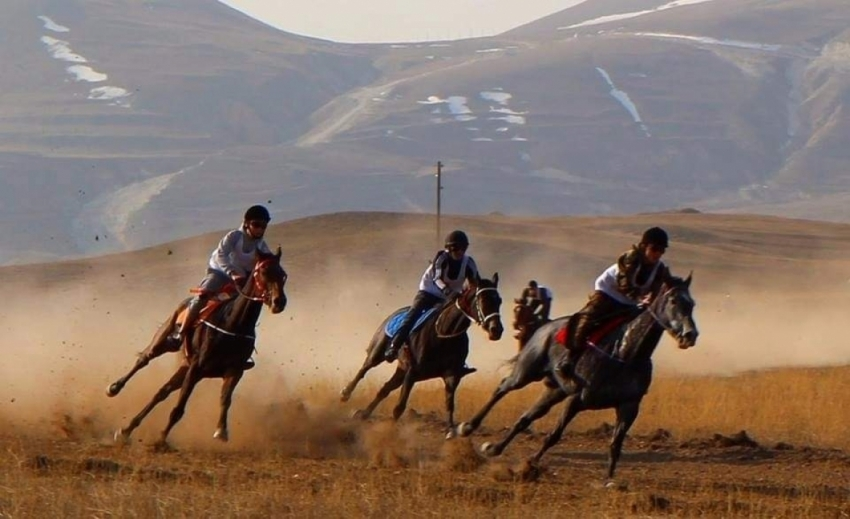 В Гумбетовском районе прошли конные скачки
