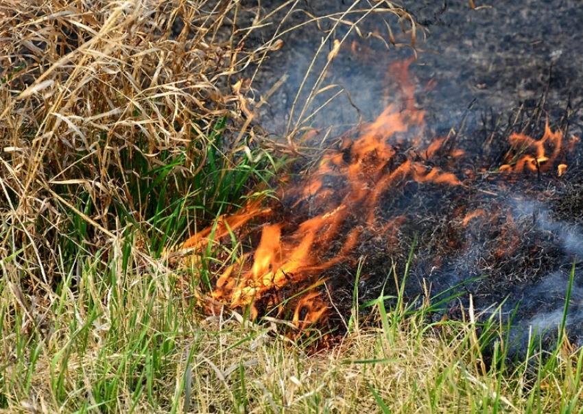В Дагестане объявлена пожароопасность 5 класса