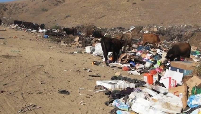 Площадь стихийной свалки в Каякентском районе выросла в 7 раз