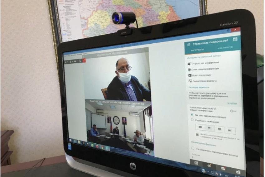 Абдулмуслимов обсудил недопущение распространения саранчовых в Дагестане