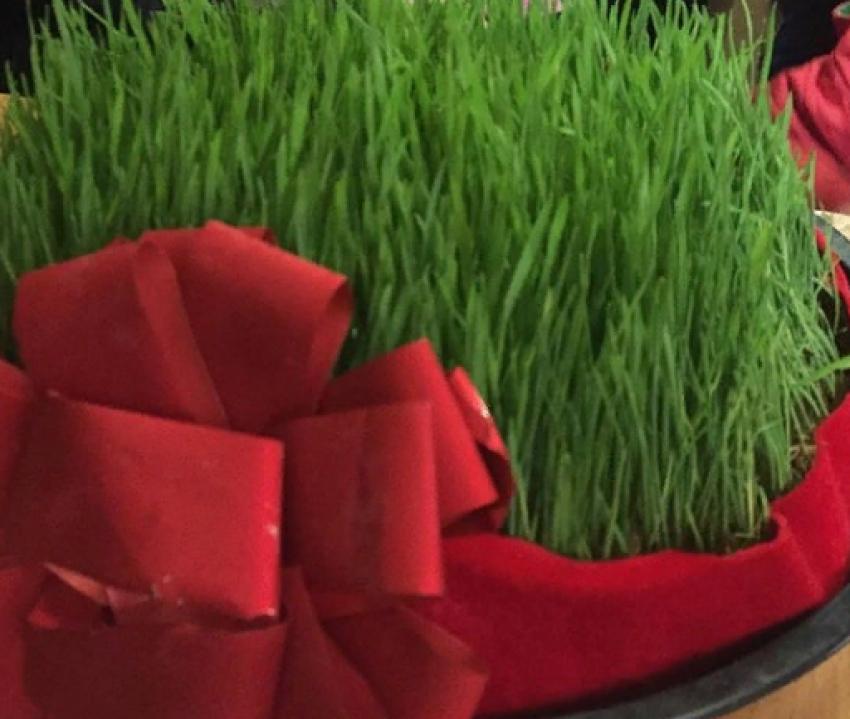 В Табасаранском районе отмечают праздник весны «Эбелцан»